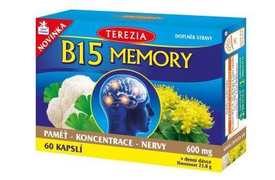 B-15-Memory-KHL