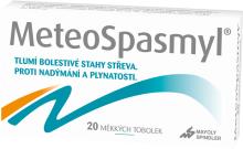 METEOSPASMYL CPS MOL 20X60MG/300MG